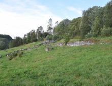 Tørreng og krigsminne ved Trondenes